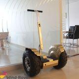 自己のバランスのスクーターの電気一人乗り二輪馬車