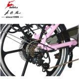 Bicicleta plegable eléctrica del marco de la aleación de aluminio del estilo 250W 36V (JSL039BL-9)