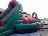 Jeu de bille chaud d'Inflatables Baller de vente, jeux gonflables de sport