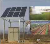 bomba 45kw solar automática para a agricultura Irragation armazenando a água