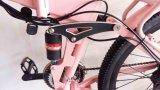 36V verstecktes Hummer-Gebirgselektrisches Fahrrad der Batterie-250W