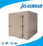 Venta fría del congelador de la placa con precio barato