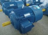 Ie2 Ie3 고능률 3 단계 감응작용 AC 전동기 Ye3-160m2-2-15kw