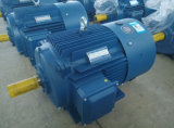 Moteur à induction électrique triphasé de la série Ie2 (fer de moulage) 75kw-4/100HP-4