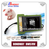 Digital Ultrasound Scanner mit Diagnose The Pregnancy von Equine, Swine, Bovine, Ovine