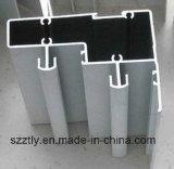 Portes d'extrusion en aluminium fini personnalisées / Windows / Profil du mur de rideau