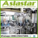 500ml usine remplissante de la bouteille 3000bph d'eau de source pure en plastique de l'eau