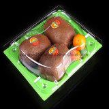 Multi plástico descartável - quadrado verde da cor que empacota para a fruta & o vegetal