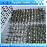 maglia tessuta quadrata della rete metallica di 1*30m