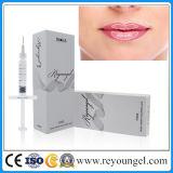 입술 충만을%s 피부 충전물 주입 Hyaluronic 산
