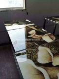 Roland-Qualitätspreiswertester Preis, UVflachbettdrucker Ly-1325 mit 2 des Dx5 Stücken Kopf-, verrückter Preis