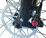 Рамка Bike горы 20 дюймов/алюминиевого сплава/батарея лития/электрический велосипед