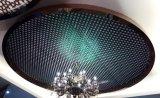 Künstlerische Decke der Großhandelsdes Edelstahl-304 Ausdehnungs-3D