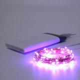 USBによって動力を与えられるDimmableの星明かりの銅線妖精ストリングはクリスマスのための紫色の装飾的つける