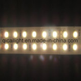 3528의 LED 유연한 지구 240LED/M