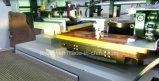 Stampatrice automatica della matrice per serigrafia per il righello