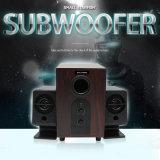 De openlucht Luidspreker van de Versterker van de Macht van de Doos van de Spreker Subwoofer Professionele PRO Audio