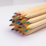 Les ventes chaudes 7inch affilées badine le crayon de couleur en bois 12 dans le tube