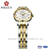 Frauen Stainess Stahl überwacht populären Armbanduhr-China-Großverkauf
