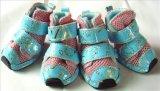 Trois chaussures imperméables à l'eau en nylon d'animal familier de couleurs