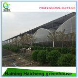 Casa verde polivinílica de la película plástica para el pepino