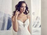 Isolationsschlauch-Brücke-Spitze-Hochzeits-Kleid mit geöffnetem zurück