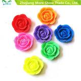 Fábrica de Suprimentos Cultivando Flores Plásticas Florescente Crescendo Brinquedos Coloridas Flores Crescendo