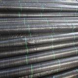 Cubierta de tierra tejida PP negra con la línea
