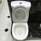 Baño Wc WC Porcelana Sanitarios WC