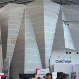 Spezielles gebildetes perforiertes Aluminiumpanel für das Ausstellungs-Gebäude in Hong Kong (RNB-088)