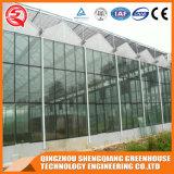 Casa verde de vidro vegetal da flor da Multi-Extensão