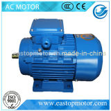 Frau Asynchronous Wechselstrommotor für Kompressoren mit externem Terminal