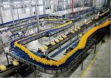 Linha de produção fábrica industrial do sumo de laranja do suco de fruta pequena do extrator do suco