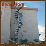 Лестница крытой/напольной спирали нержавеющей стали металла деревянная (SJ-S039)