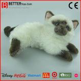 Gato realístico personalizado En71 dos animais enchidos do brinquedo do luxuoso