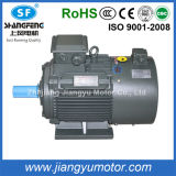 380V Yvp Pole-Changing Multi-Speed Three-Phase Asynchronous Motor 2