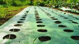 穴または地被植物または景色のファブリックまたは庭カバーが付いているWeedのマット