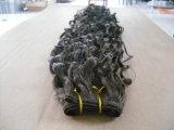 Trama dei capelli (FJLW-W02)