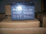 batterie profonde de gel de cycle de 12V 24ah pour le protecteur d'UPS/Surge