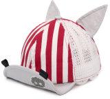 0-6 el Snapback de encargo 100% del borde de los años de la alta calidad plana del algodón embroma el casquillo