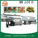 真空の食糧低温の低温殺菌された機械