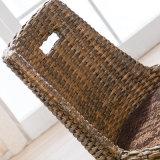 Svago del rattan della mobilia antica che pranza presidenza B05-9
