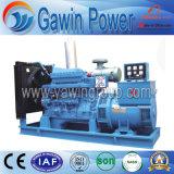 générateur 110kw diesel insonorisé avec l'engine de la Chine Shangchai
