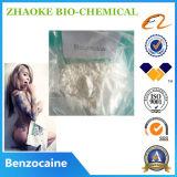El mejor polvo del Benzocaine de la calidad 99.5%