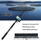 IP68 subaquáticos portáteis Waterproof o sistema flexível da câmera DVR da inspeção (peixe T5 do Vis)