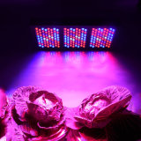 Veg and Bloom 600W LED Grow Light Spectrum completo