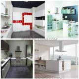 Mobilia della cucina di MFC per uso di progetto dell'appartamento
