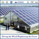 Système commercial et industriel de picovolte avec les panneaux solaires de Macrolink