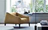 Il sofà sezionale di più nuovo svago pigro delle due sedi ha impostato per la casa (FS-008)