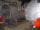 Caldera de vapor horizontal de la caldera de Wns con el mechero de gas de Nutural